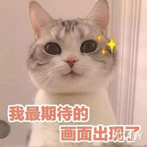 娱乐圈美手大赏!王凯、易烊千玺、蔡徐坤谁将胜出?