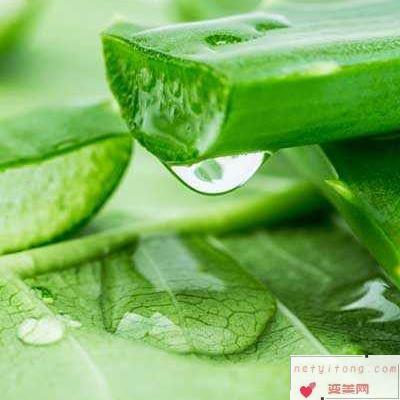 芦荟面膜补水效果好吗 怎么做补水